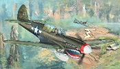 P40N Warhawk Fighter
