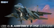 USAF F15E in Action OEF & OIF Fighter